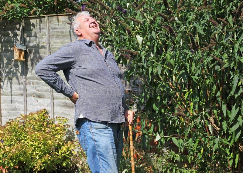 有痛苦的坏后面的老人 坐骨神经痛 免版税库存图片