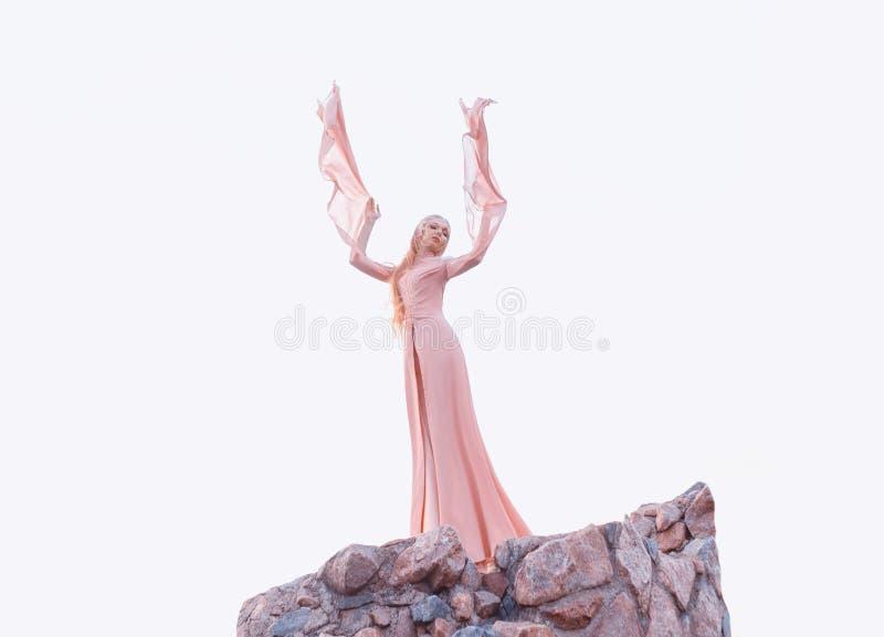 有白肤金发的公平的头发的美妙的典雅的女孩有冠状头饰的,穿一套豪华长的浅粉红色的振翼的礼服服装 免版税库存照片
