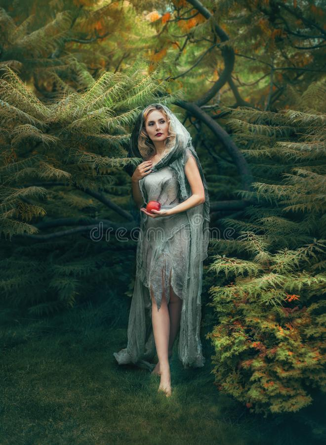 有白肤金发的卷发的神奇邪恶的巫婆从一个厚实的森林出来用一个红色苹果,在一件老亚麻制礼服那 库存图片