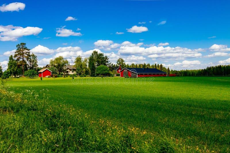 有白色修剪的传统红色农厂房子谷仓在有蓝天的开放牧场地在芬兰 免版税库存照片