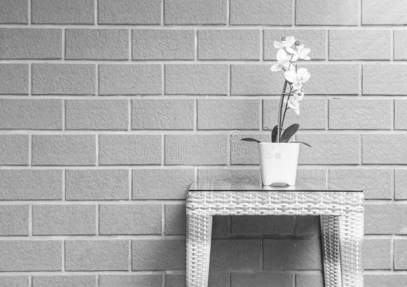 有白色兰花花的特写镜头人为植物在木织法桌上的花盆在被弄脏的砖墙纹理背景, bea 免版税图库摄影