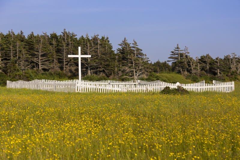 有白色木十字架的老宽容公墓和在黄色野花的领域的尖桩篱栅 免版税图库摄影
