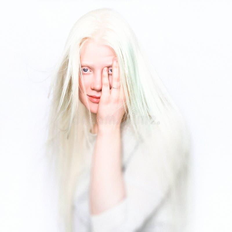 有白色皮肤、玫瑰色嘴唇和白发的白变种女性 在轻的背景的照片面孔 头的画象 白肤金发的女孩 免版税图库摄影