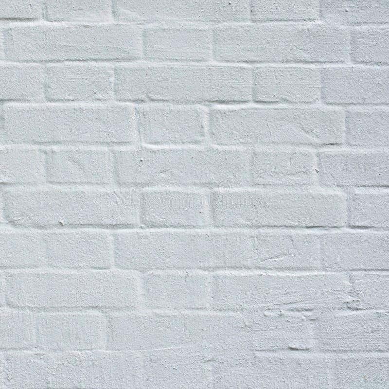 有白色粉刷的关闭的砖墙 免版税库存照片
