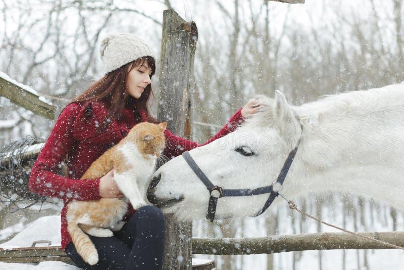 有白马和大蓬松猫的美丽的逗人喜爱的女孩在冬天多雪的公园 俏丽的女孩爱抚白马 女孩画象和 图库摄影