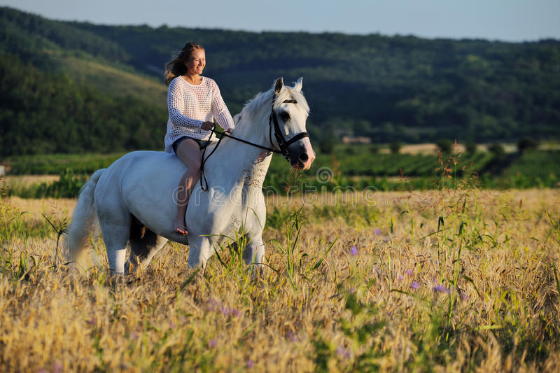 有白马的美丽的女孩在领域 库存图片