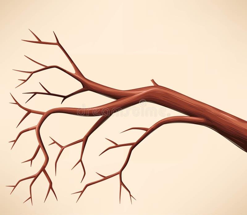 仅有的分行结构树 皇族释放例证