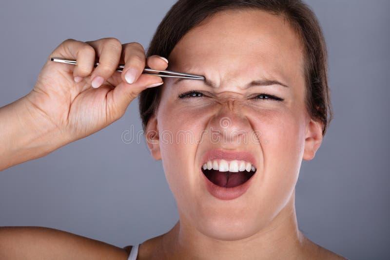 有的妇女痛苦,当采有镊子的时眼眉头发 免版税库存图片