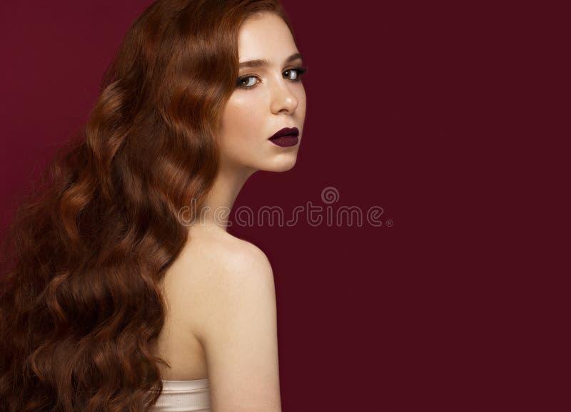 有的美丽的红头发人女孩完全卷曲头发和经典构成 秀丽表面 免版税库存照片