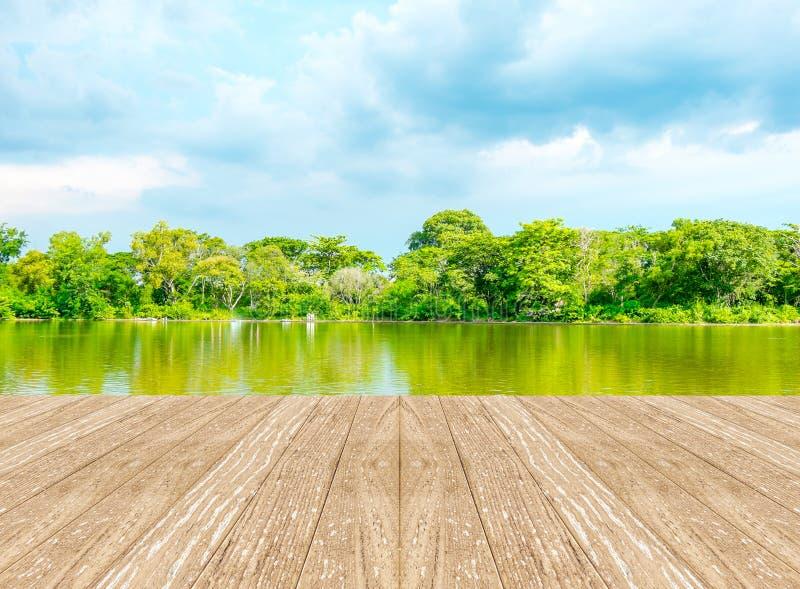 有盐水湖的空的透视室森林的和蓝天和wo 免版税图库摄影