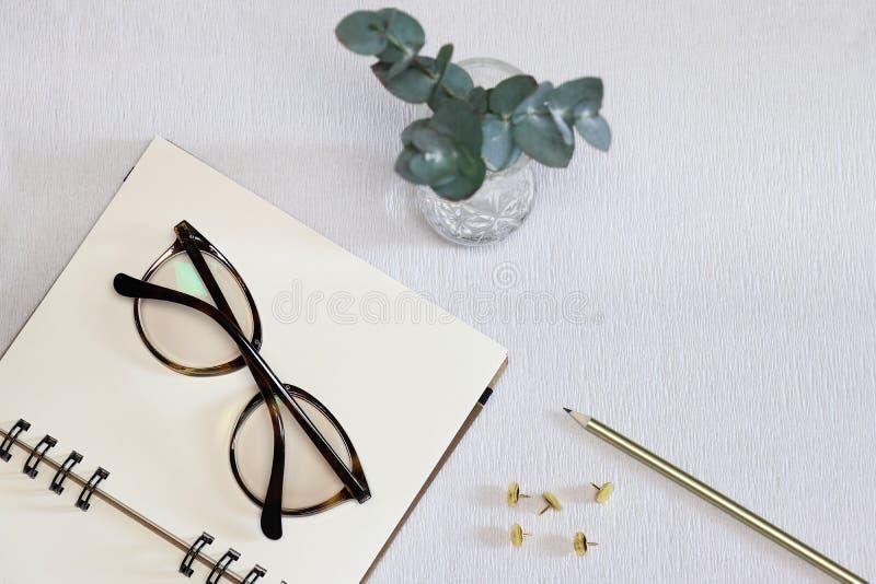 有眼镜、笔、金黄别针和绿色植物的被打开的笔记本 库存图片