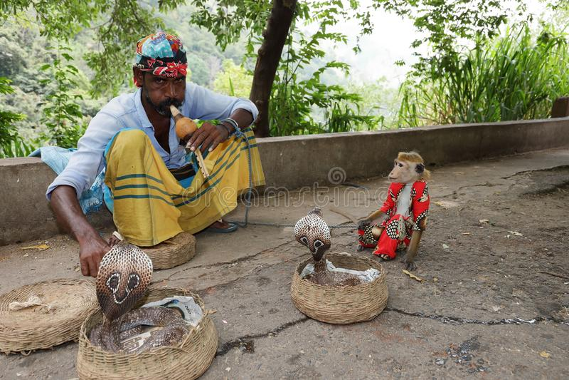有眼镜蛇的耍蛇者在斯里兰卡 库存图片