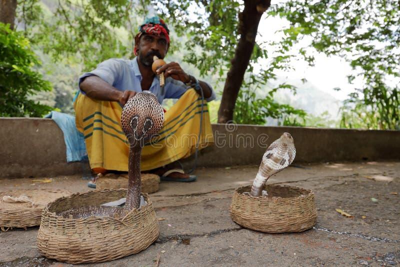 有眼镜蛇的耍蛇者在斯里兰卡 免版税图库摄影