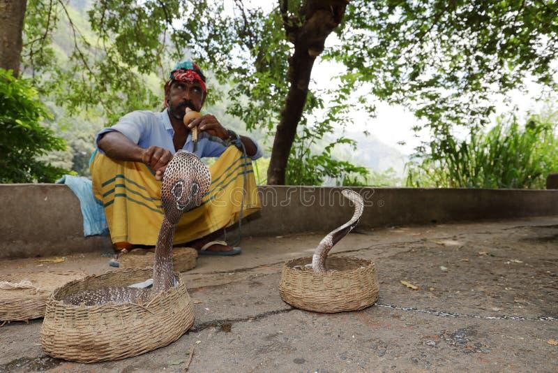 有眼镜蛇的耍蛇者在斯里兰卡 免版税库存照片