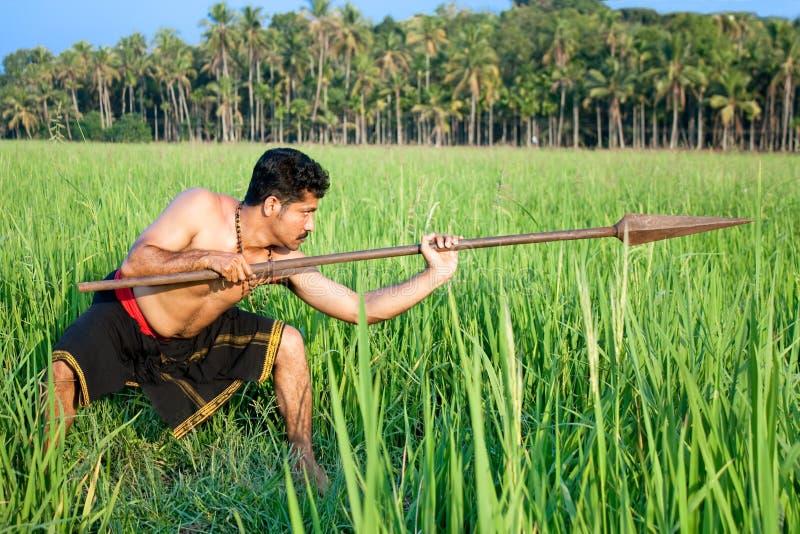 有矛的战士在深绿稻田 库存照片