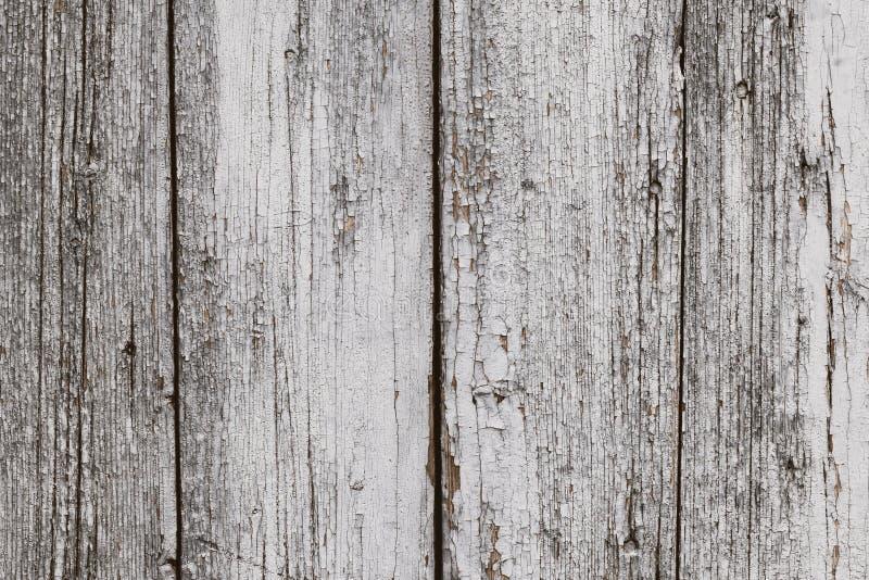 有短钉的老白色被绘的木破裂的片状篱芭 难看的东西木土气纹理,地板样式 被风化的纹理,土气 库存照片