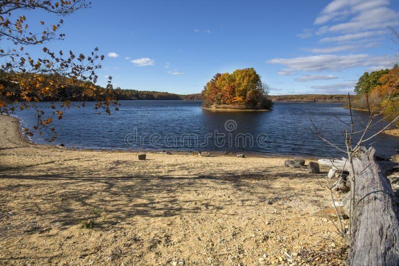 有石渣海滩和秋叶的,曼斯菲尔德凹陷, Conne湖 免版税图库摄影