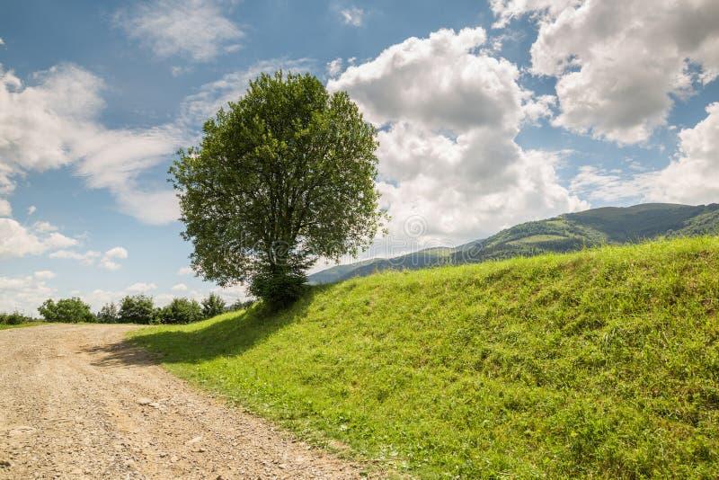 有石渣的路舒展小山 库存图片