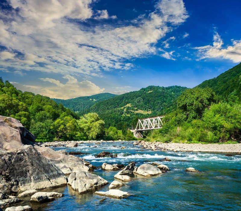 有石头和桥梁的森林河 库存图片