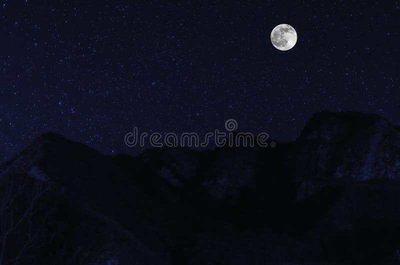 有石头的山河和草在山坡的脚的森林里在月光的晚上 阿塞拜疆 免版税库存照片