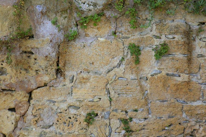 有石头的混凝土墙和 免版税图库摄影