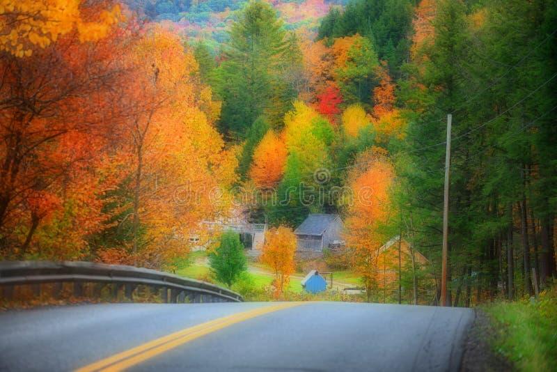 有秋叶的佛蒙特 库存照片