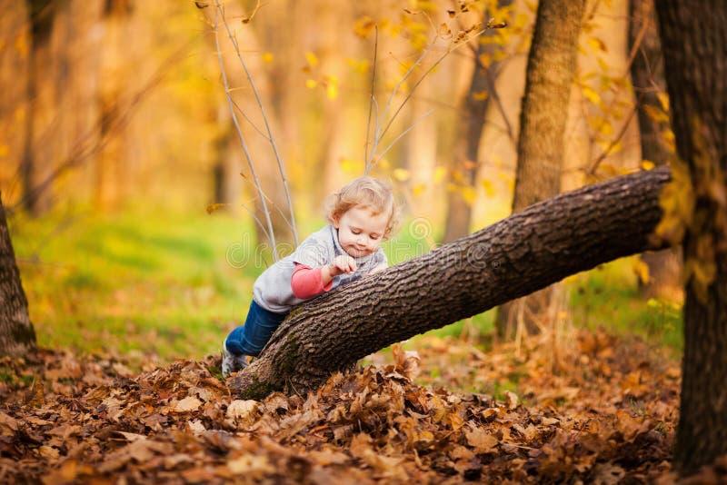有秋叶的可爱的小女孩 免版税图库摄影