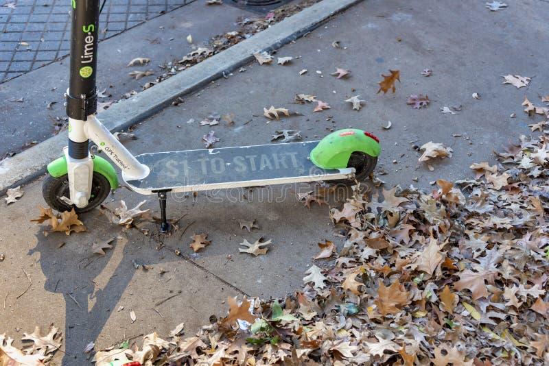 有秋叶的石灰滑行车 免版税库存图片