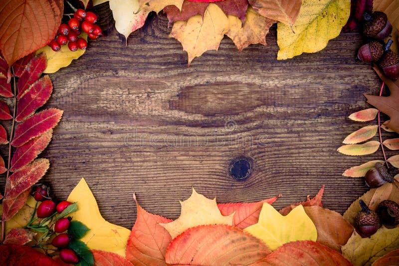 有秋叶的老木板 库存照片
