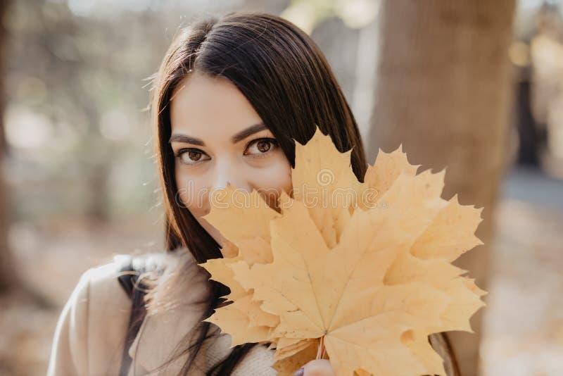 有秋天叶子户外的年轻秀丽妇女在秋天公园 免版税库存照片