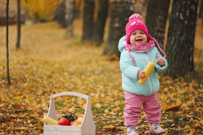 有秋天收获的小女孩在公园 免版税图库摄影