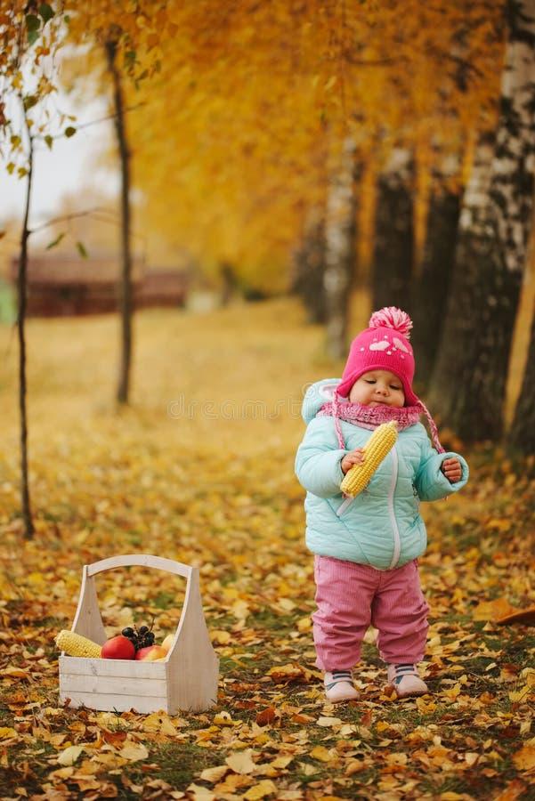 有秋天收获的小女孩在公园 库存图片