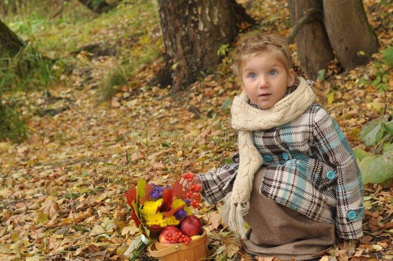 有秋天花束的一个小女孩和成熟苹果篮子在森林草甸蹲下了下来 图库摄影