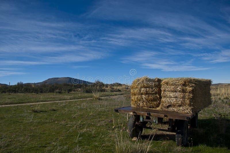 有秸杆大包的农业拖车 库存图片