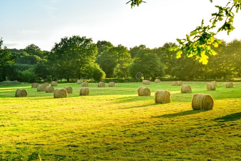 有秸杆大包的农田草甸在日落 法国布里坦尼 库存照片