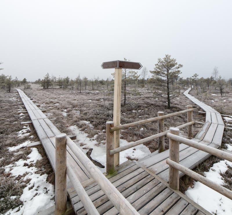 有空的方向标的木木板走道 免版税库存照片