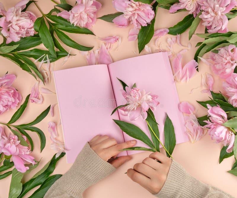 有空的桃红色页和两只女性手的开放笔记本 免版税库存照片