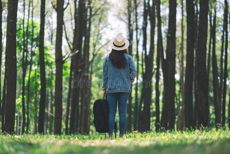 有站立和调查美丽的松木的帽子和背包的女性旅客 免版税库存照片