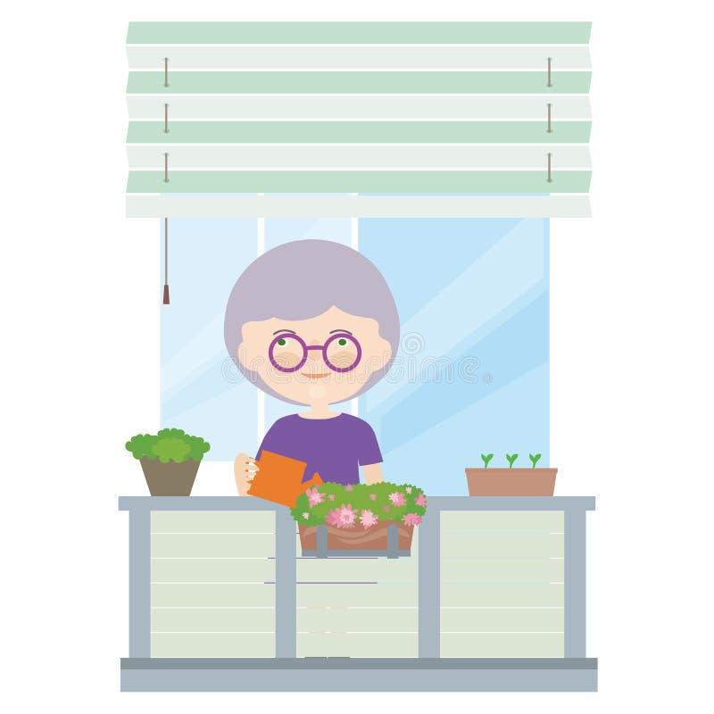 有站立在一朵阳台和浇灌的花的灰色头发的老妇人在罐,传染媒介 库存例证