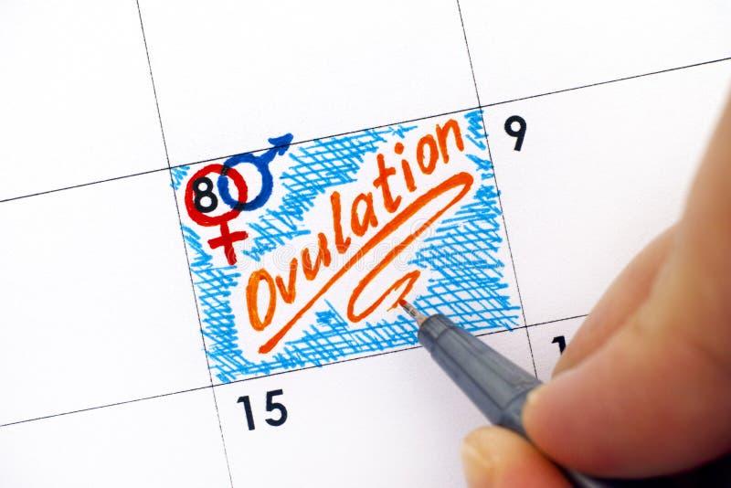 有笔文字提示排卵的妇女手指在日历 库存照片