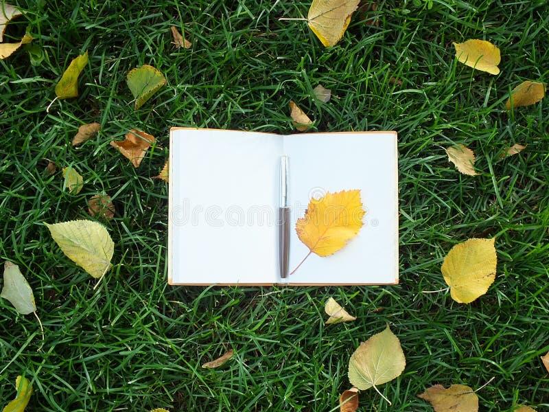 有笔的笔记本在绿草 库存照片