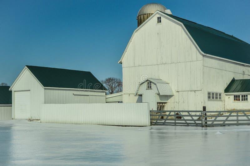 有筒仓的大白色谷仓在冬天雪 免版税库存照片
