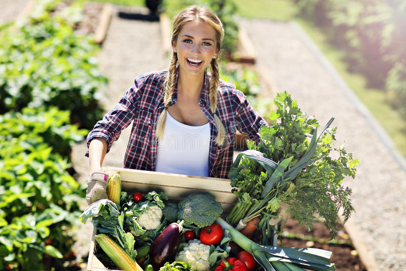 有箱子的俏丽的妇女菜在她的庭院里 免版税库存照片