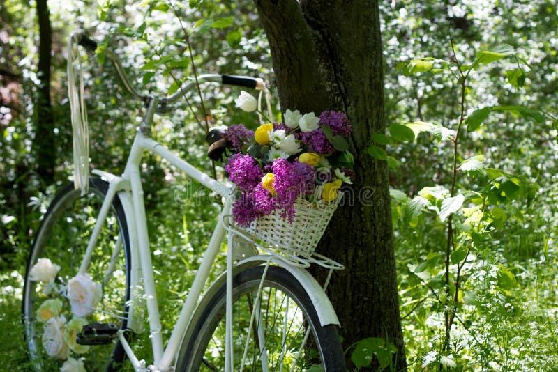 有篮子的一辆美丽的自行车 库存图片