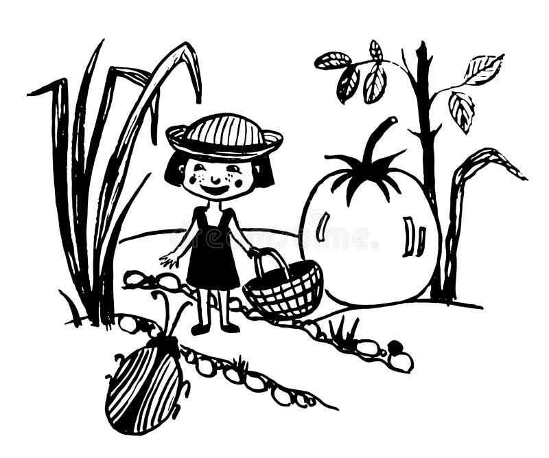 有篮子的走在有巨大的蕃茄剪影的,手拉的comi庭院里的一个微小的神仙的女孩的图画 皇族释放例证