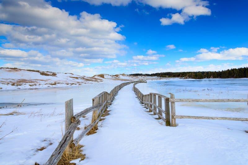 有篱芭的冻走道张贴引导道路 库存照片