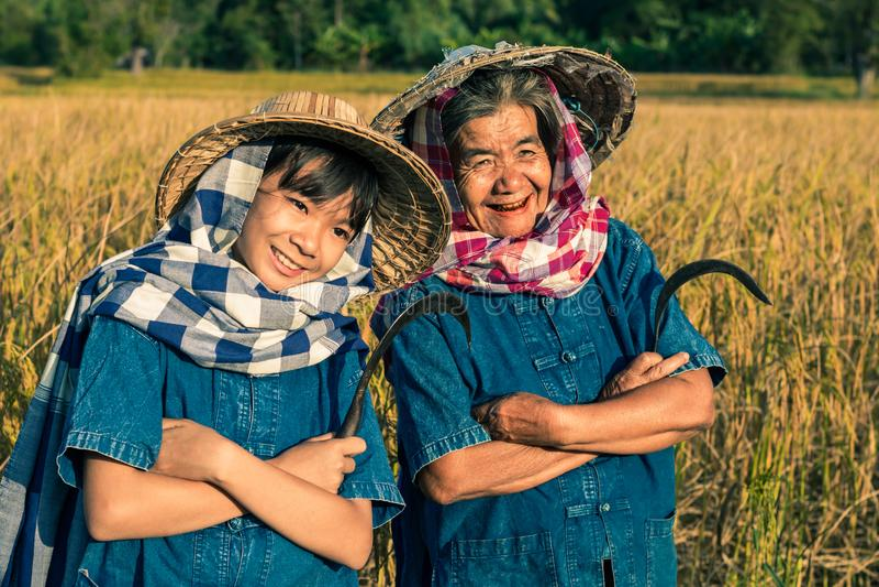 有米收获的祖母和农夫甥女 库存图片