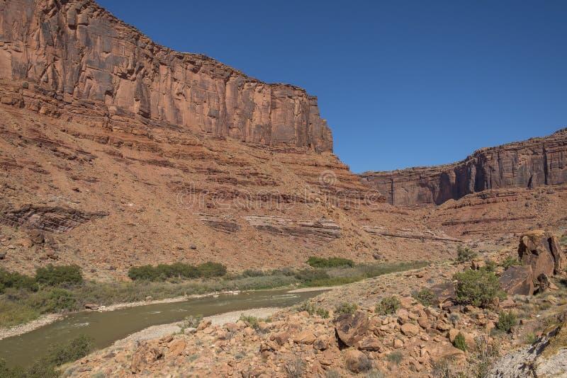 有红砂岩岩石的科罗拉多河 免版税库存图片