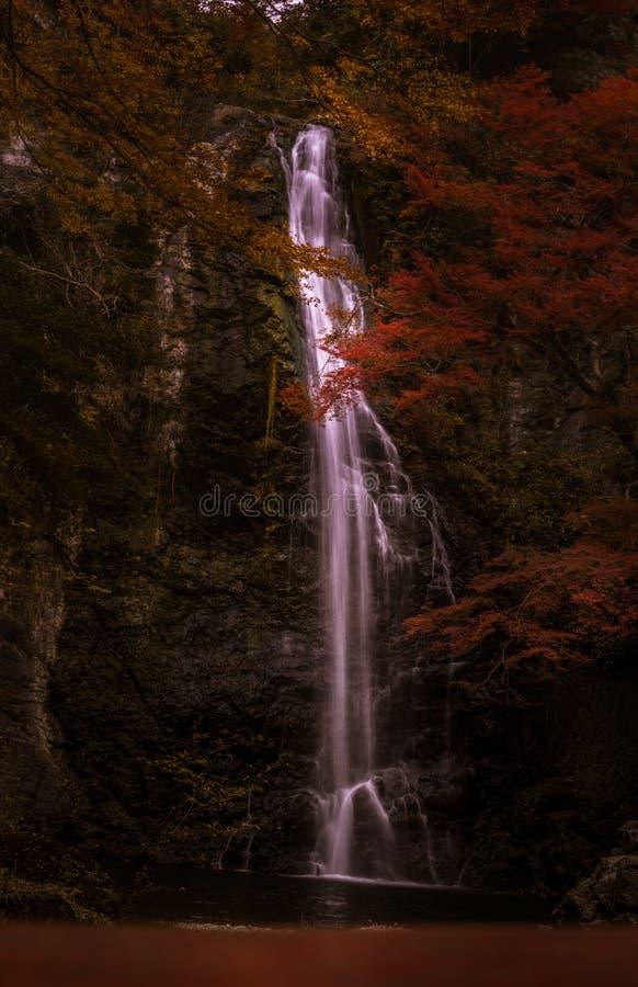 有红色和黄色叶子和小瀑布的秋天森林 库存图片