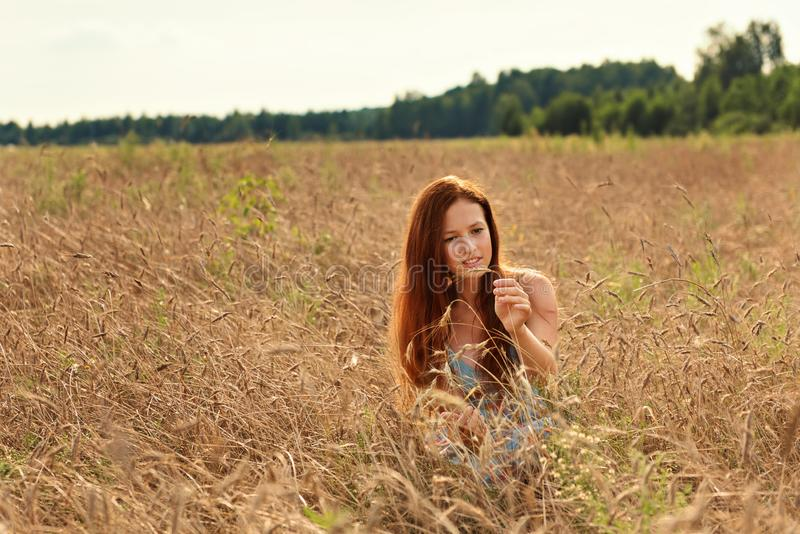 有红色头发的一个女孩小心地回顾麦子的耳朵在一个农村领域的 免版税库存照片